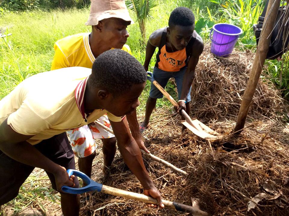 npo-africa-tys-farm-fiber-compost