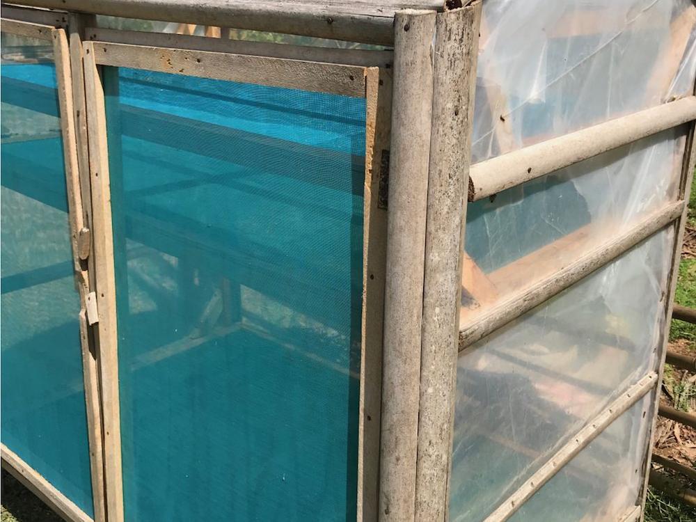 npo-africa-tys-farm-mushroom-solar-drier