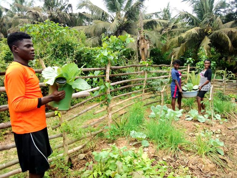 npo-africa-tys-garden