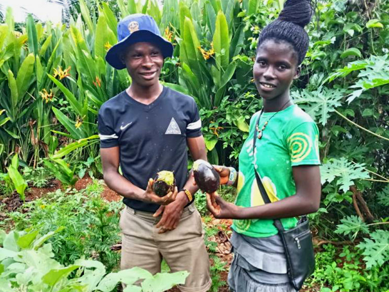 npo-africa-tys-farm-eggplant
