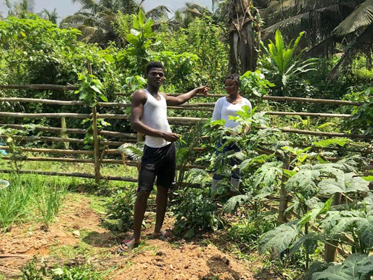 npo-africa-tys-farm-garden-popo