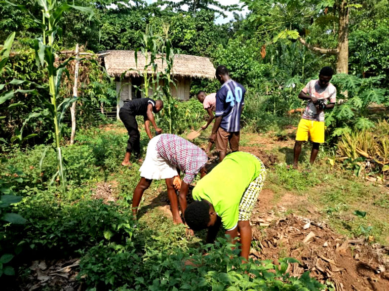 npo-africa-tys-farm-work