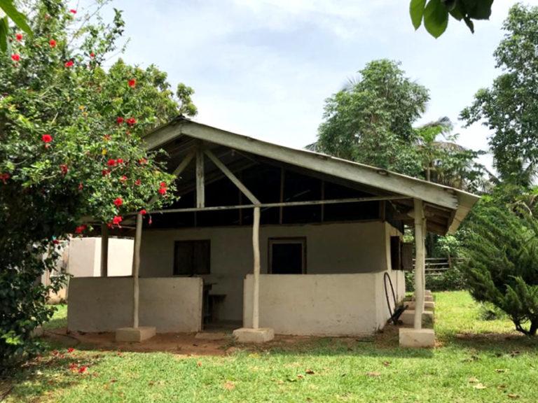 ngo-africa-tys-bungalo-2