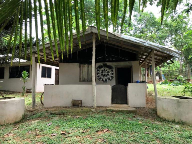 ngo-africa-tys-bungalo-3