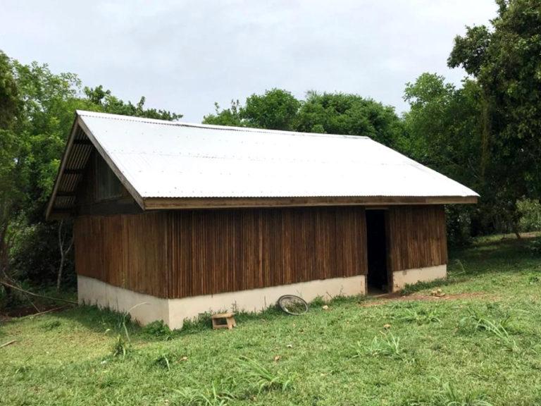 ngo-africa-tys-shed